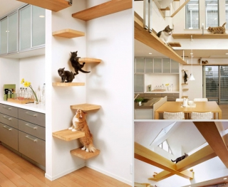 25 great furniture design ideas for your pets