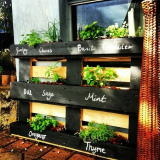 10 awesome herb planter ideas