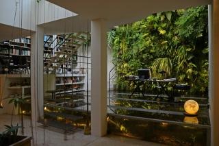 32 indoor vertical garden ideas