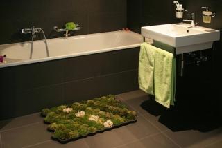 Living moss carpet for your bathroom